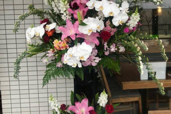 コチョウランのスタンド花【熊本の花屋・バルーン専門店KIKI】